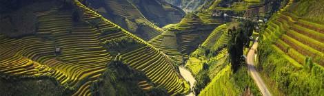 Mu-Cang-Chai-Vietnam-panorama